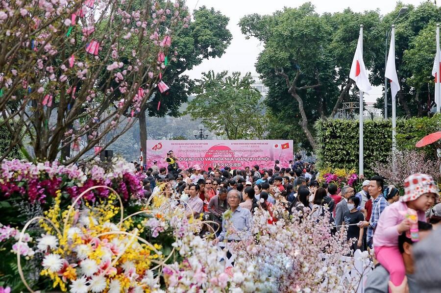 Lễ hội hoa anh đào Nhật Bản tại Hà Nội