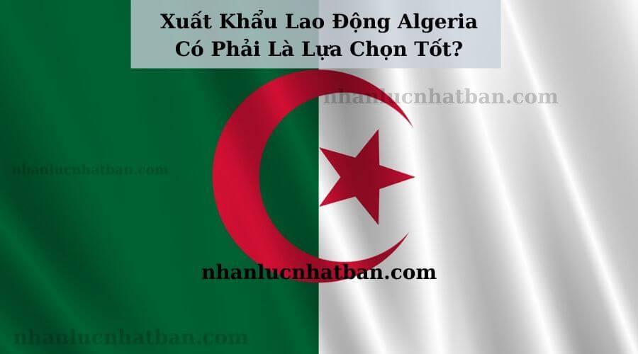 Xuất Khẩu Lao Động Algeria Có Phải Là Lựa Chọn Tốt