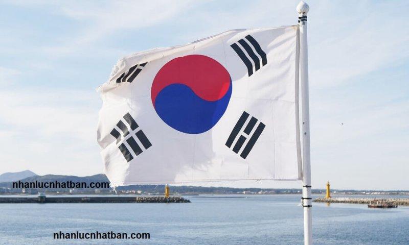 Xuất khẩu lao động Hàn Quốc năm 2020 - Nên hay không?