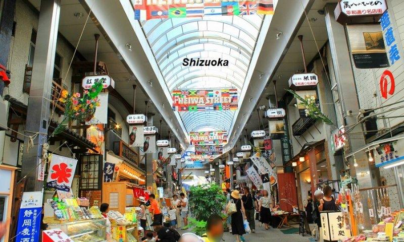 Tỉnh Shizuoka Nhật Bản
