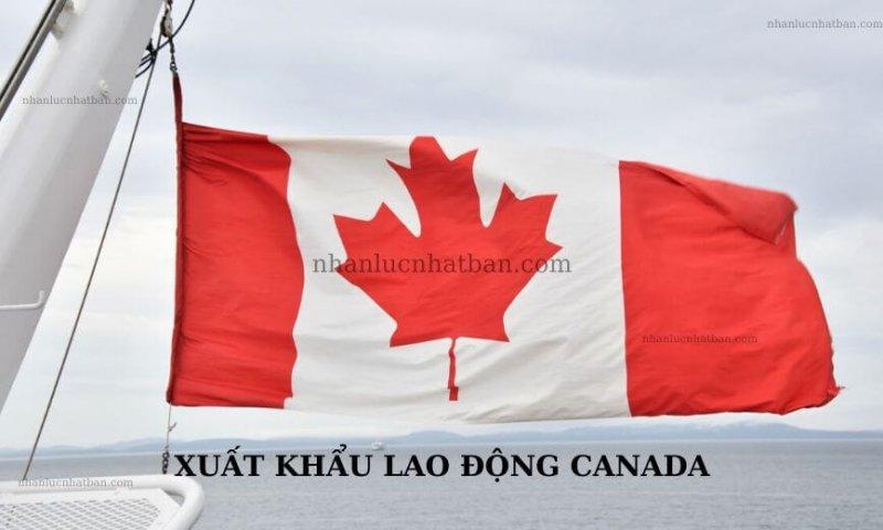 Hiện tại, xuất khẩu lao động Canada vẫn là điều mới mẻ với người Việt Nam. Tuy nhiên, đây lại là một thị trường tốt với mức lương siêu khủng. Cùng tìm hiểu về điều kiện, chi phí, thủ tục, ưu và nhược điểm khi làm việc tại Canada thôi nào.